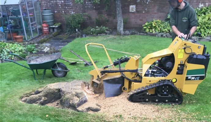 Stump Grinding & Removal-Greenacres Tree Trimming and Tree Removal Services-We Offer Tree Trimming Services, Tree Removal, Tree Pruning, Tree Cutting, Residential and Commercial Tree Trimming Services, Storm Damage, Emergency Tree Removal, Land Clearing, Tree Companies, Tree Care Service, Stump Grinding, and we're the Best Tree Trimming Company Near You Guaranteed!
