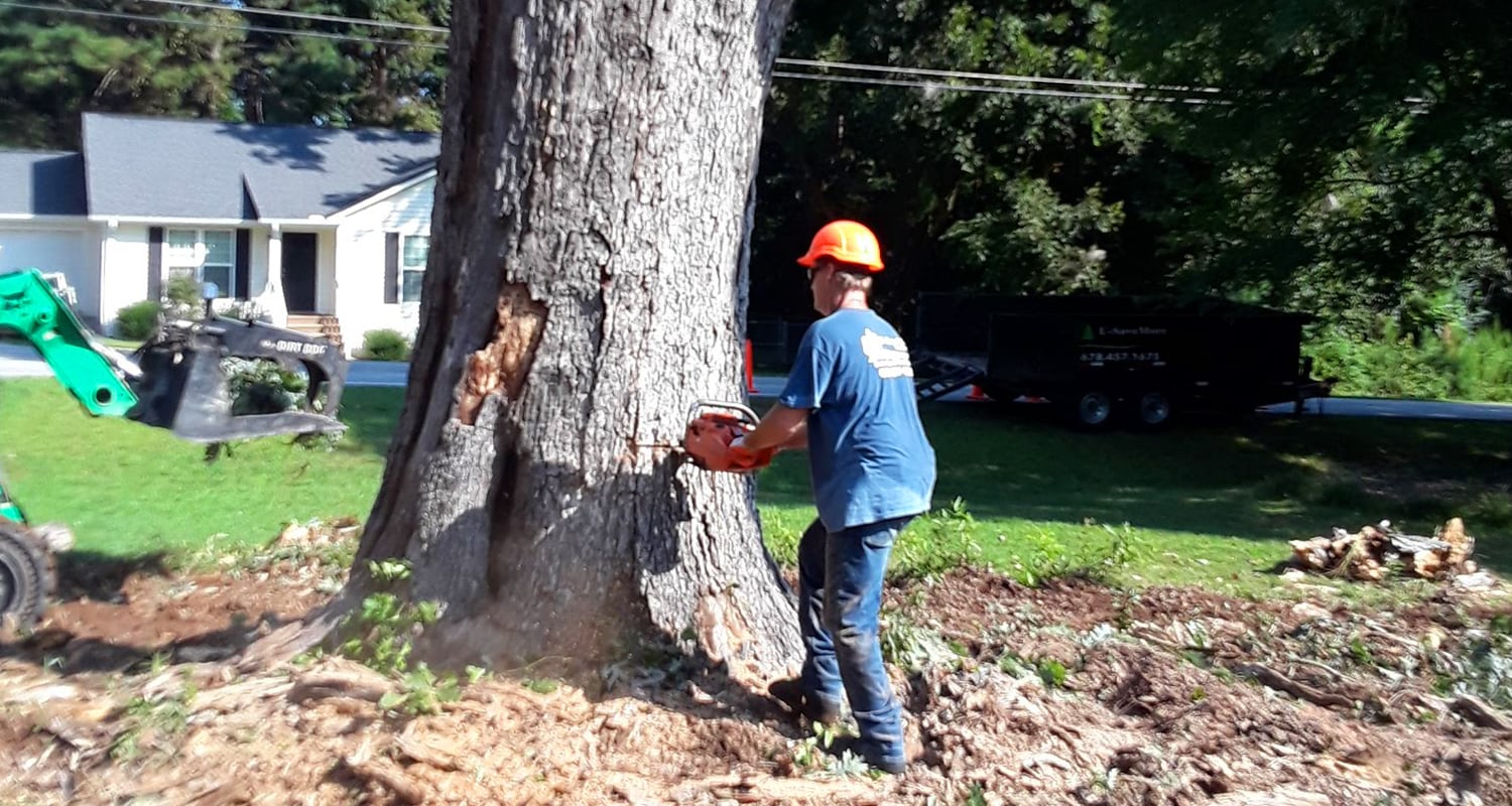 Tree Pruning & Tree Removal-Greenacres Tree Trimming and Tree Removal Services-We Offer Tree Trimming Services, Tree Removal, Tree Pruning, Tree Cutting, Residential and Commercial Tree Trimming Services, Storm Damage, Emergency Tree Removal, Land Clearing, Tree Companies, Tree Care Service, Stump Grinding, and we're the Best Tree Trimming Company Near You Guaranteed!